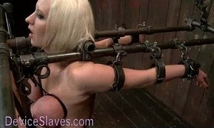 Busty blonde bound in metal tormented xVideos