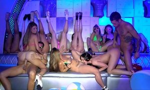 Teen models in bikini on a club party Beeg